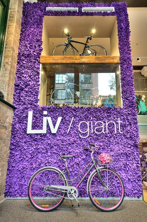 LivGiant7